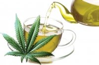 Hemp tea effective or not