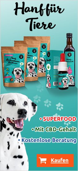 Right Banner Dog 249x395 DE